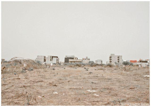 Sahel Gris © Mame-Diarra Niang